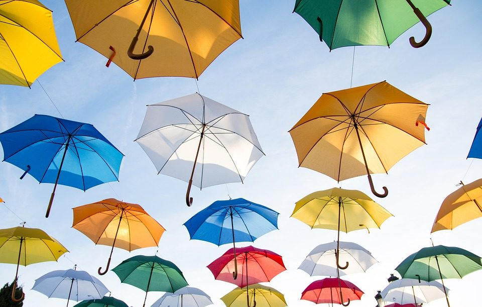 Saginaw Bay Underwriters personal umbrella liability policy